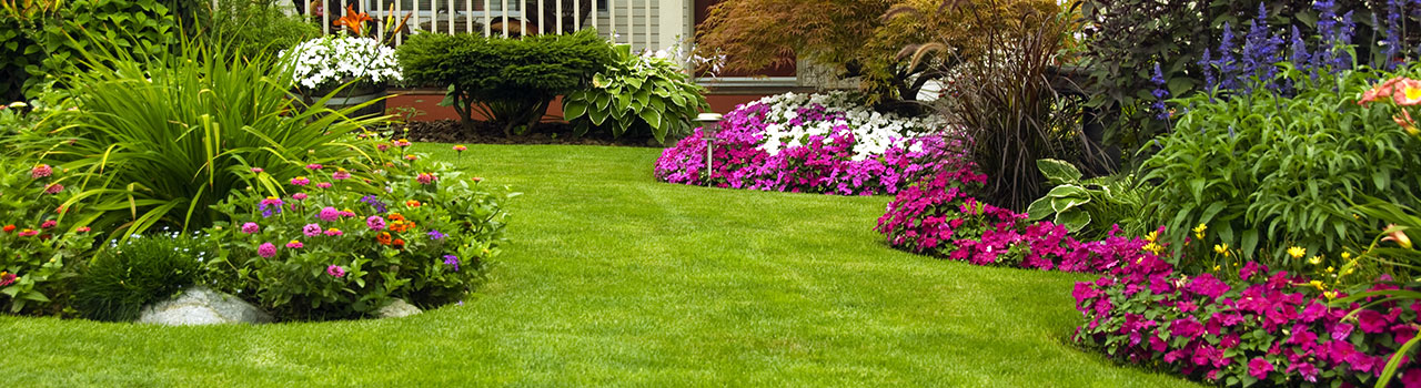 Alliston Landscape Design Services